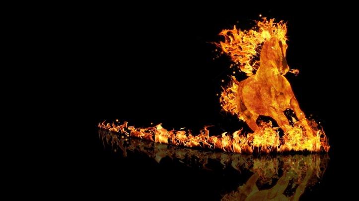 fire-horse crazy